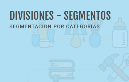 Dipac-img-servicios-Segme-425x270